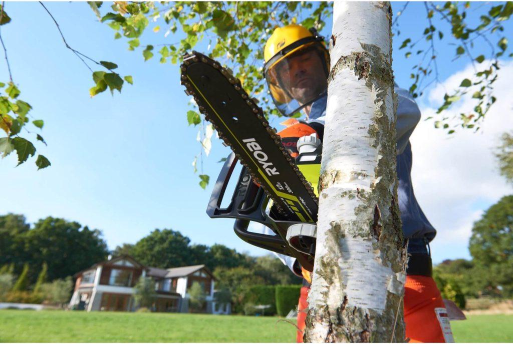 tronçonneuse abattage d'arbre